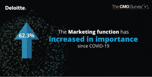 62% respondentów uważa, że mimo poważnych spadków przychodów ze sprzedaży, zysków oraz liczby pozyskanych klientów, nastąpił wzrost znaczenia działów marketingu